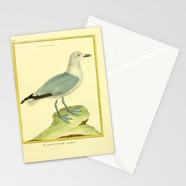 062 mouette cendree (Fr) Stationery Cards