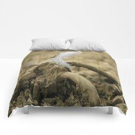 Like a feder Comforters