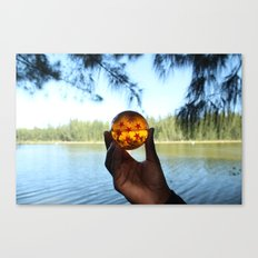 seven star at lake. Canvas Print