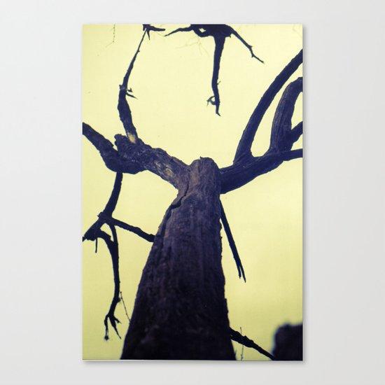 Aragosta Canvas Print