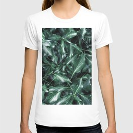 Ivy 01 T-shirt