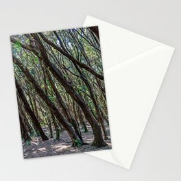 Maritime pine forest in Salento Stationery Cards