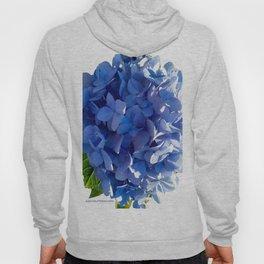 Blue Hydrangia Flower Blossom Hoody