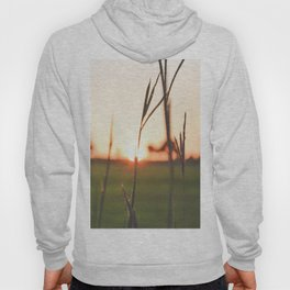 Lost In the Light Hoody