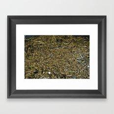 floating wood texture Framed Art Print