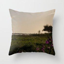 Ventura at Sunset Throw Pillow