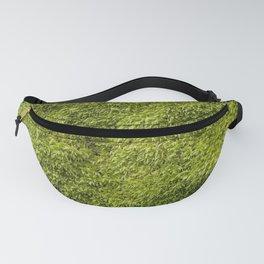 Moss Fanny Pack