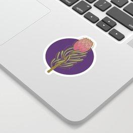 Protea Flower Sticker