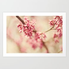 gifts of pink blossoms Art Print