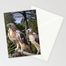 Pair of Red-tail Hawks Stationery Cards