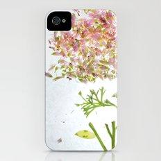 Botanical Blueprints iPhone (4, 4s) Slim Case