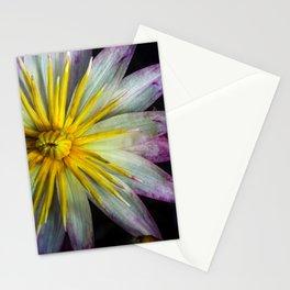 Glass Castle Lily Stationery Cards