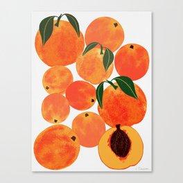Peach Harvest Canvas Print