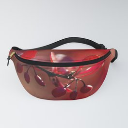 FIRE - Indian Summer VII Fanny Pack