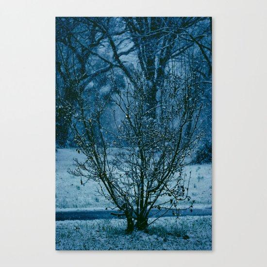 Blue Winter  Canvas Print