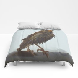 Apres Douche Comforters