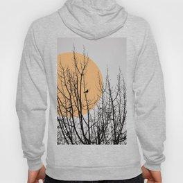 Birds and tree silhouette Hoody