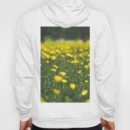 Build Me Up Buttercup Hoody