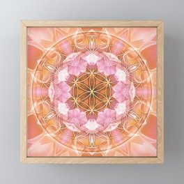 Flower of Life Mandalas 18 Framed Mini Art Print