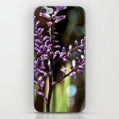 Botanical Dream of Spring iPhone & iPod Skin