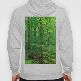 Forest 7 Hoody