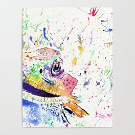 Bearded Dragon in full colour Poster