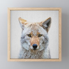 Coyote - Colorful Framed Mini Art Print
