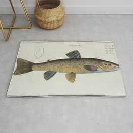 Vintage Illustration of a Brown Trout (1785) Rug