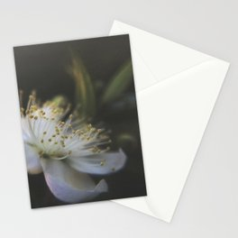 Light Within Stationery Cards