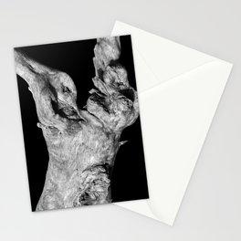 Wood Photography | B&W | Landscape Stationery Cards