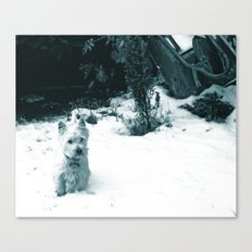 This is Snow Fun... Canvas Print