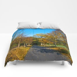 Autumnal feeling of October Comforters