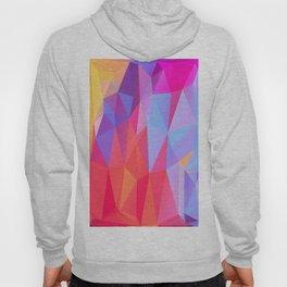 Vertices 8 Hoody