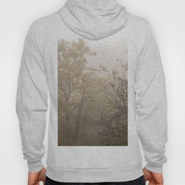 Autumnal naked trees surrounded by fog Hoody