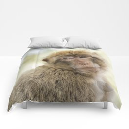 Monkey around Comforters