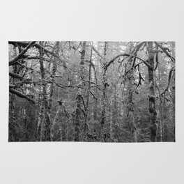 Olympic Rainforest - B&W Rug