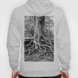 Tree of Life and Limb Hoody
