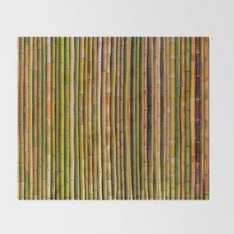 Bamboo fence, texture Decke