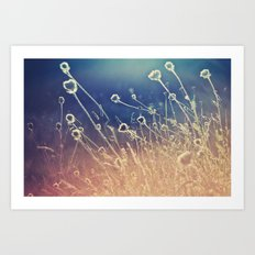 Blue and day  Art Print
