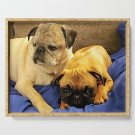Pair of Pugs Serving Tray