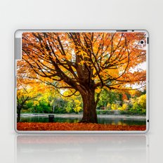 Many colors of fall Laptop & iPad Skin