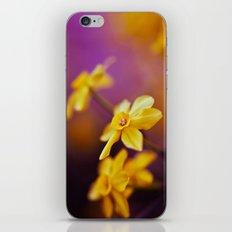 Like A Dream iPhone & iPod Skin