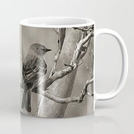 The Quest:  Black and White Bird Antiqued Coffee Mug