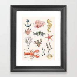 Sealife Schoolchart Framed Art Print