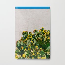 Cactus Blooms II Metal Print