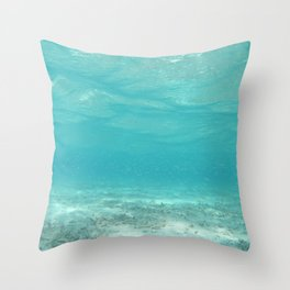 All Clear Under the Sea except for a school of tiny fish Throw Pillow