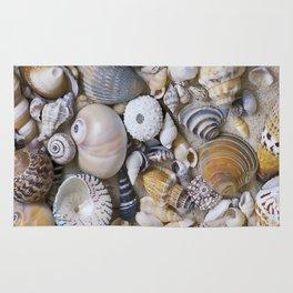 Sea Shell Collection Rug
