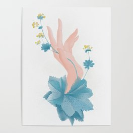 Lady's mantle Poster