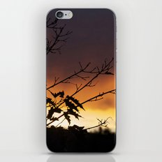 Sundown iPhone & iPod Skin