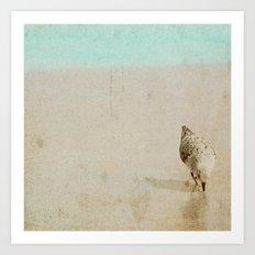 Sandpiper Art Print